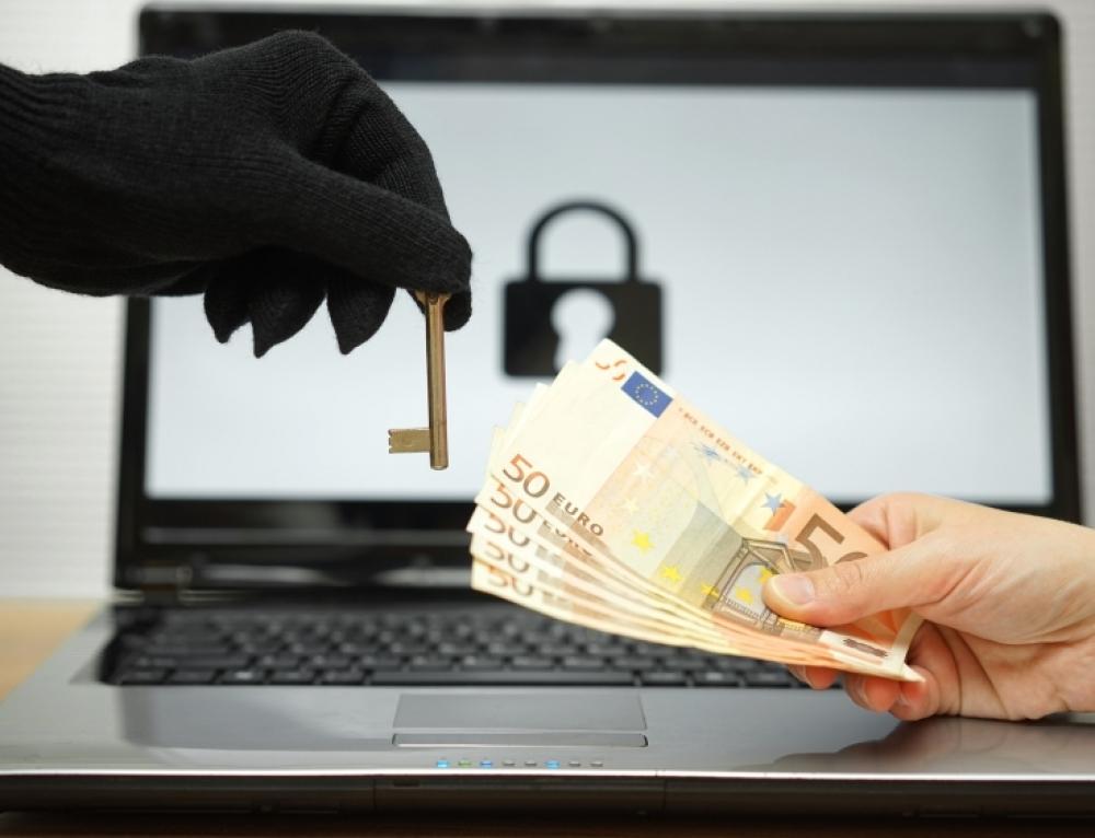 Empresas expuestas a ataques informáticos o cibernéticos